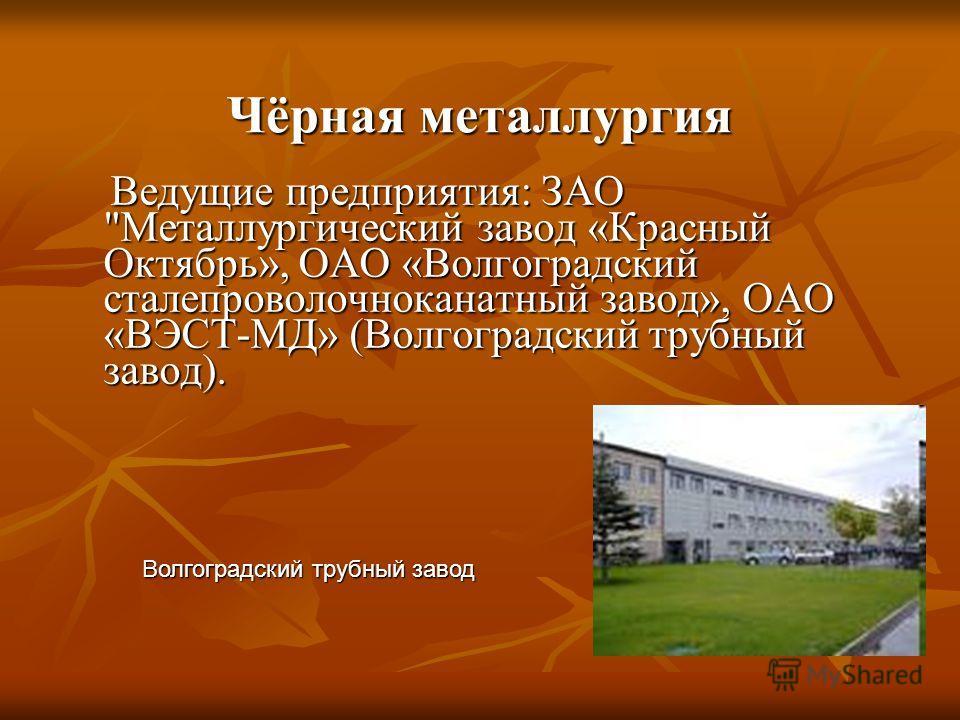 Чёрная металлургия Ведущие предприятия: ЗАО