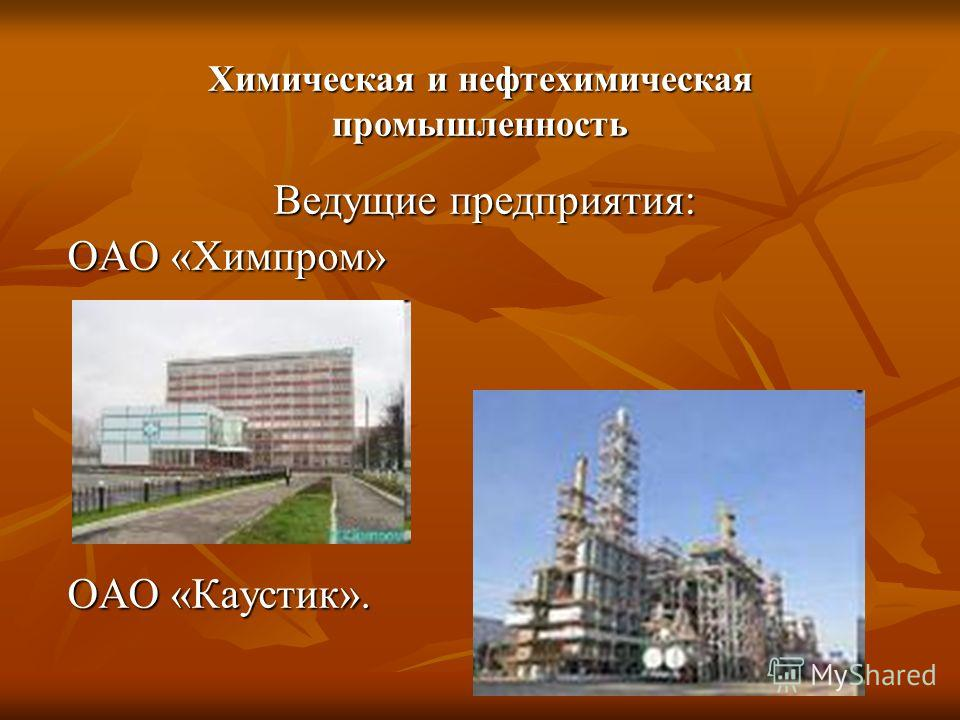 Химическая и нефтехимическая промышленность Ведущие предприятия: ОАО «Химпром» ОАО «Каустик».