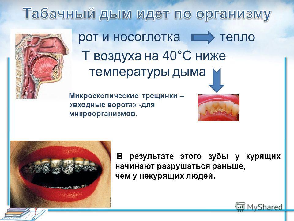 рот и носоглотка тепло Т воздуха на 40°С ниже температуры дыма Микроскопические трещинки – «входные ворота» -для микроорганизмов. В результате этого зубы у курящих начинают разрушаться раньше, чем у некурящих людей.