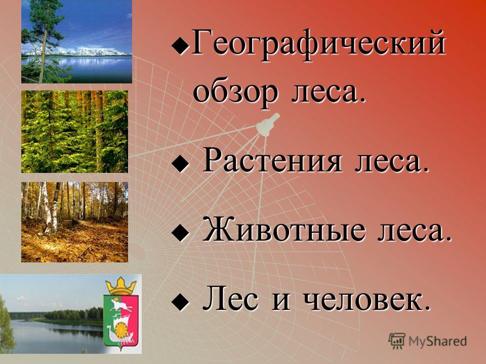 Географический обзор леса. Р Растения леса. Ж Животные леса. Л Лес и человек.