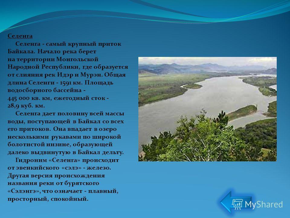 Селенга Селенга - самый крупный приток Байкала. Начало река берет на территории Монгольской Народной Республики, где образуется от слияния рек Идэр и Мурэн. Общая длина Селенги - 1591 км. Площадь водосборного бассейна - 445 000 кв. км, ежегодный сток