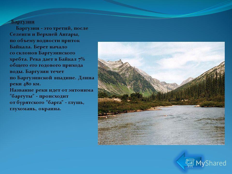 Баргузин Баргузин - это третий, после Селенги и Верхней Ангары, по объему водности приток Байкала. Берет начало со склонов Баргузинского хребта. Река дает в Байкал 7% общего его годового прихода воды. Баргузин течет по Баргузинской впадине. Длина рек