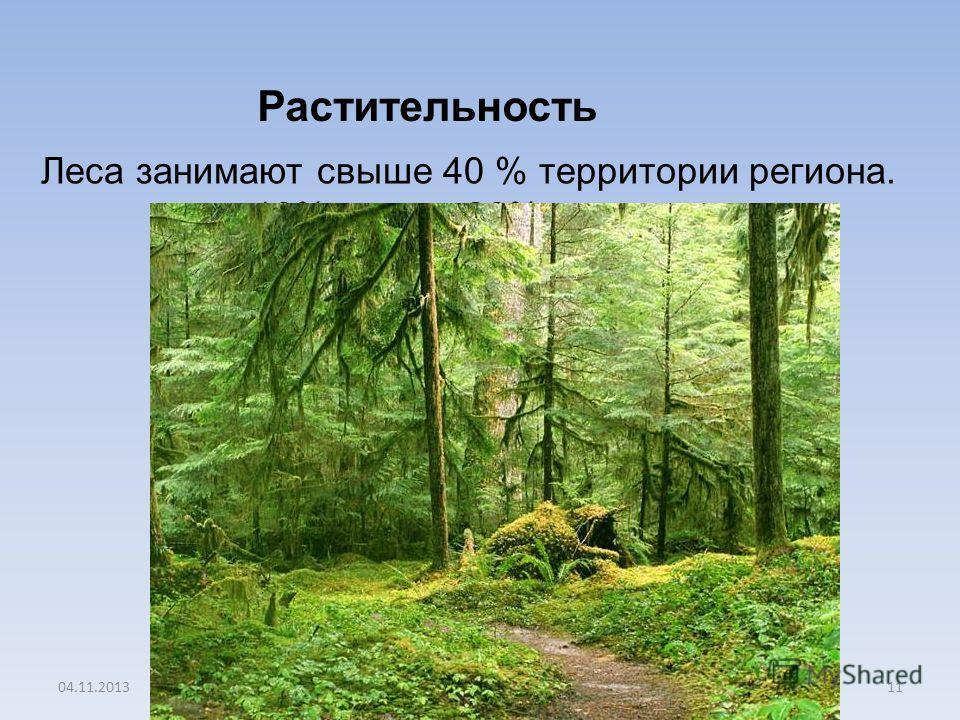 04.11.201311 Леса занимают свыше 40 % территории региона. 10% -луга, 30% - пашня Растительность