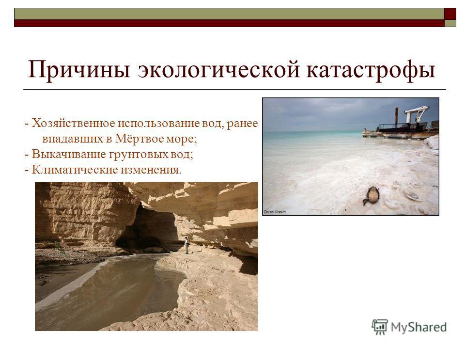 Экологические проблемы За последнее столетие уровень воды упал на 25 метров, и разрушительный процесс только прогрессирует. На сегодняшний день уровень моря падает в среднем на 1 метр в год. В 1977 году из-за осушения море оказалось поделённым на две