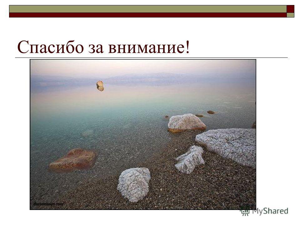 Грязь Мертвого моря действительно лечебная Проверено на себе: