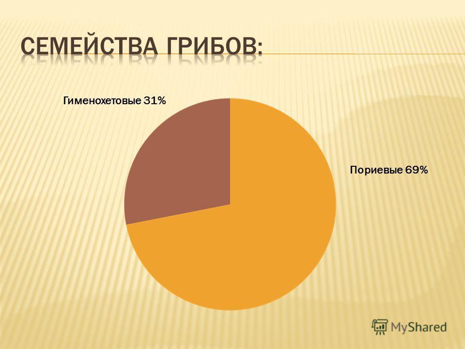 Пориевые 69% Гименохетовые 31%