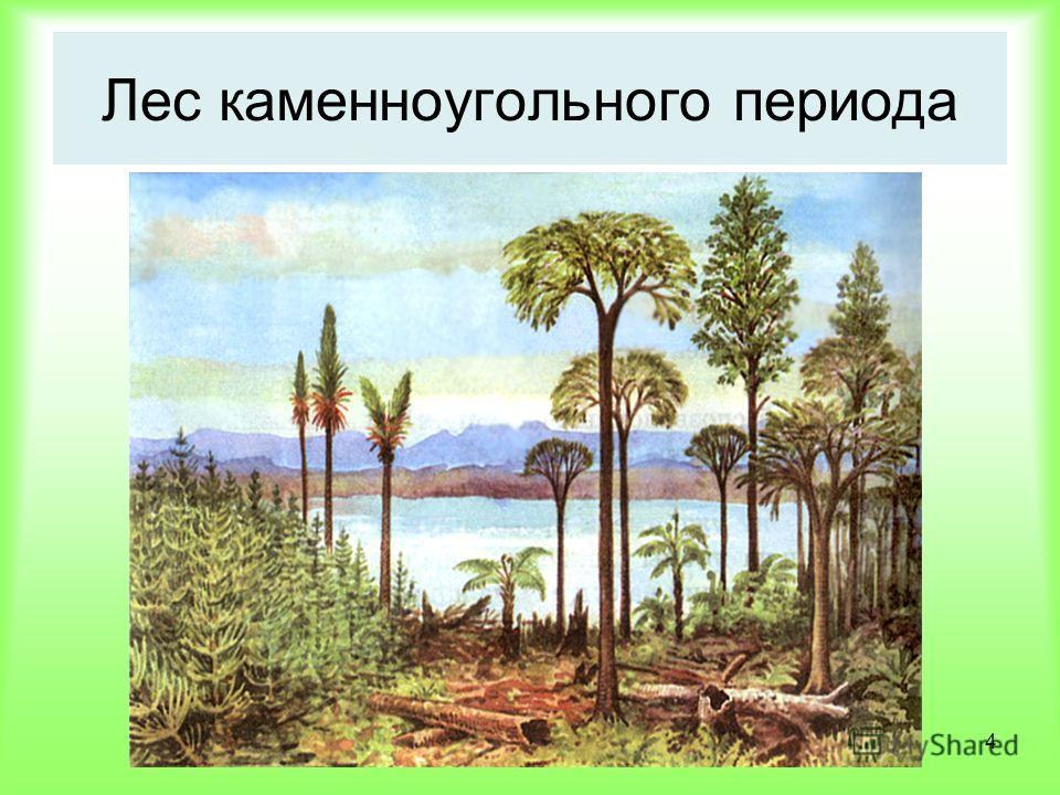 4 Лес каменноугольного периода