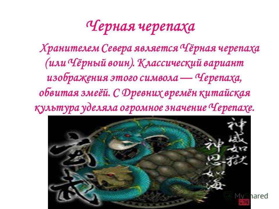 Черная черепаха Хранителем Севера является Чёрная черепаха (или Чёрный воин). Классический вариант изображения этого символа Черепаха, обвитая змеёй. С Древних времён китайская культура уделяла огромное значение Черепахе.