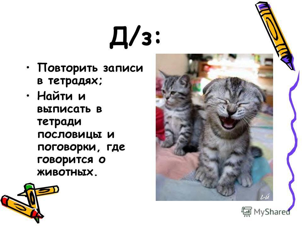 Д/з: Повторить записи в тетрадях; Найти и выписать в тетради пословицы и поговорки, где говорится о животных.