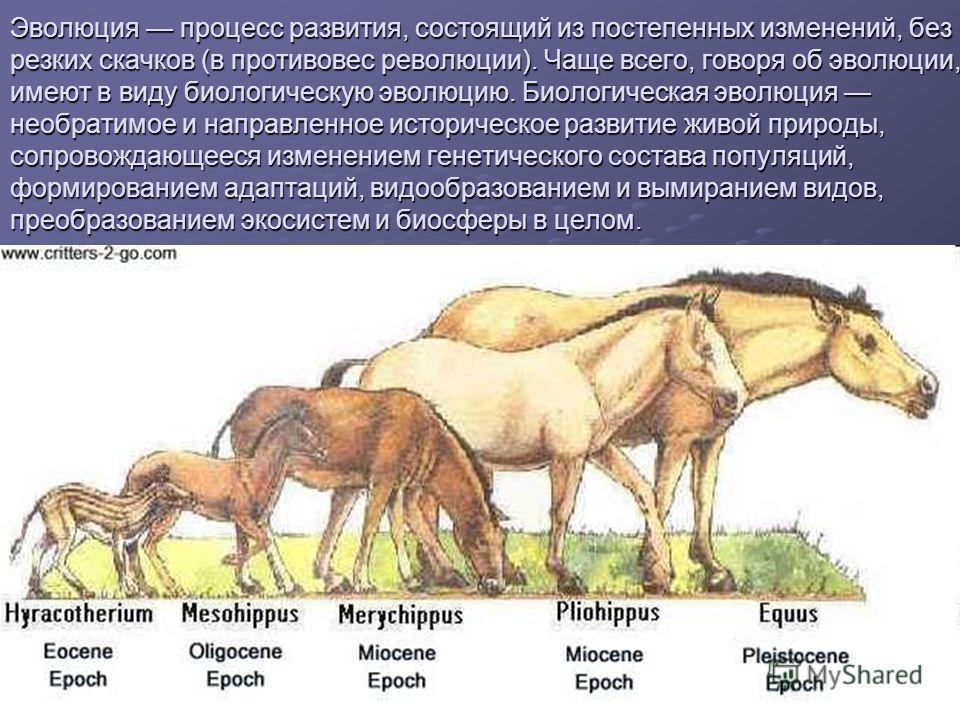 Эволюция процесс развития, состоящий из постепенных изменений, без резких скачков (в противовес революции). Чаще всего, говоря об эволюции, имеют в виду биологическую эволюцию. Биологическая эволюция необратимое и направленное историческое развитие ж