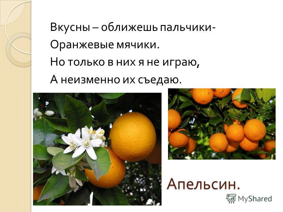 Апельсин. Вкусны – оближешь пальчики - Оранжевые мячики. Но только в них я не играю, А неизменно их съедаю.
