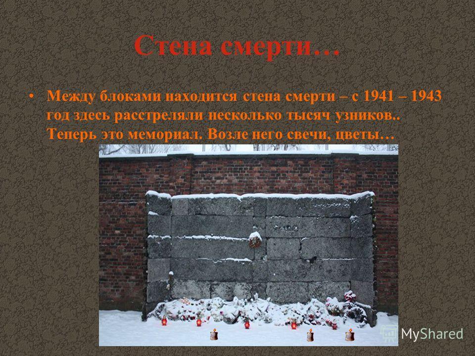 Стена смерти… Между блоками находится стена смерти – с 1941 – 1943 год здесь расстреляли несколько тысяч узников.. Теперь это мемориал. Возле него свечи, цветы…