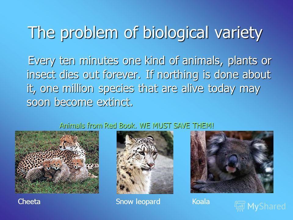 The problem of biological variety The problem of biological variety Every ten minutes one kind of animals, plants or insect dies out forever. If north