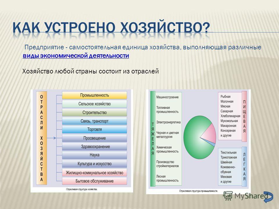 Предприятие - самостоятельная единица хозяйства, выполняющая различные виды экономической деятельности виды экономической деятельности Хозяйство любой страны состоит из отраслей