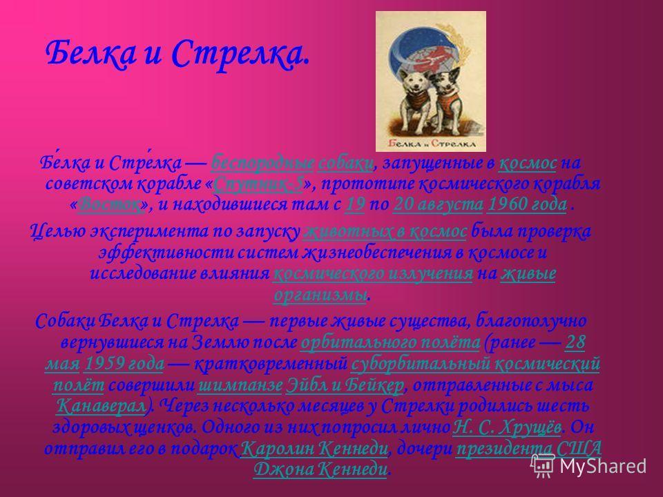 Белка и Стрелка. Белка и Стрелка беспородные собаки, запущенные в космос на советском корабле «Спутник-5», прототипе космического корабля «Восток», и находившиеся там с 19 по 20 августа 1960 года.беспородныесобакикосмосСпутник-5Восток1920 августа1960