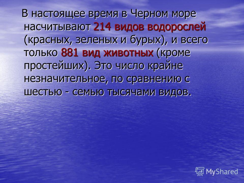 В настоящее время в Черном море насчитывают 214 видов водорослей (красных, зеленых и бурых), и всего только 881 вид животных (кроме простейших). Это число крайне незначительное, по сравнению с шестью - семью тысячами видов.