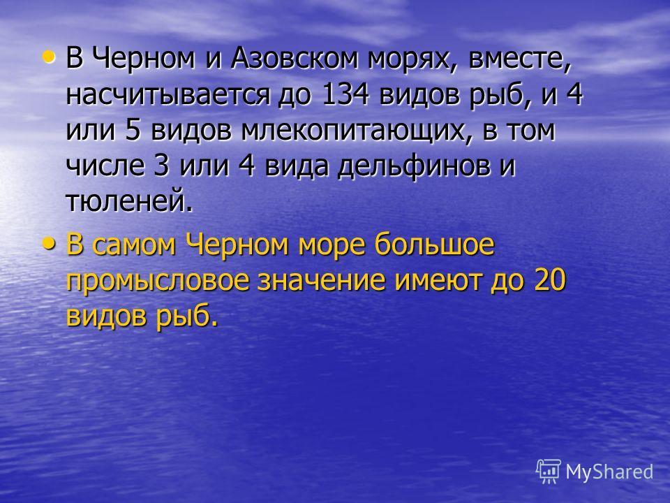 В Черном и Азовском морях, вместе, насчитывается до 134 видов рыб, и 4 или 5 видов млекопитающих, в том числе 3 или 4 вида дельфинов и тюленей. В Черном и Азовском морях, вместе, насчитывается до 134 видов рыб, и 4 или 5 видов млекопитающих, в том чи