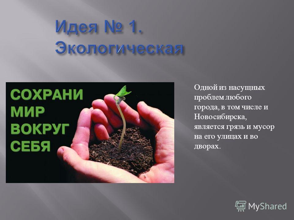 Одной из насущных проблем любого города, в том числе и Новосибирска, является грязь и мусор на его улицах и во дворах.