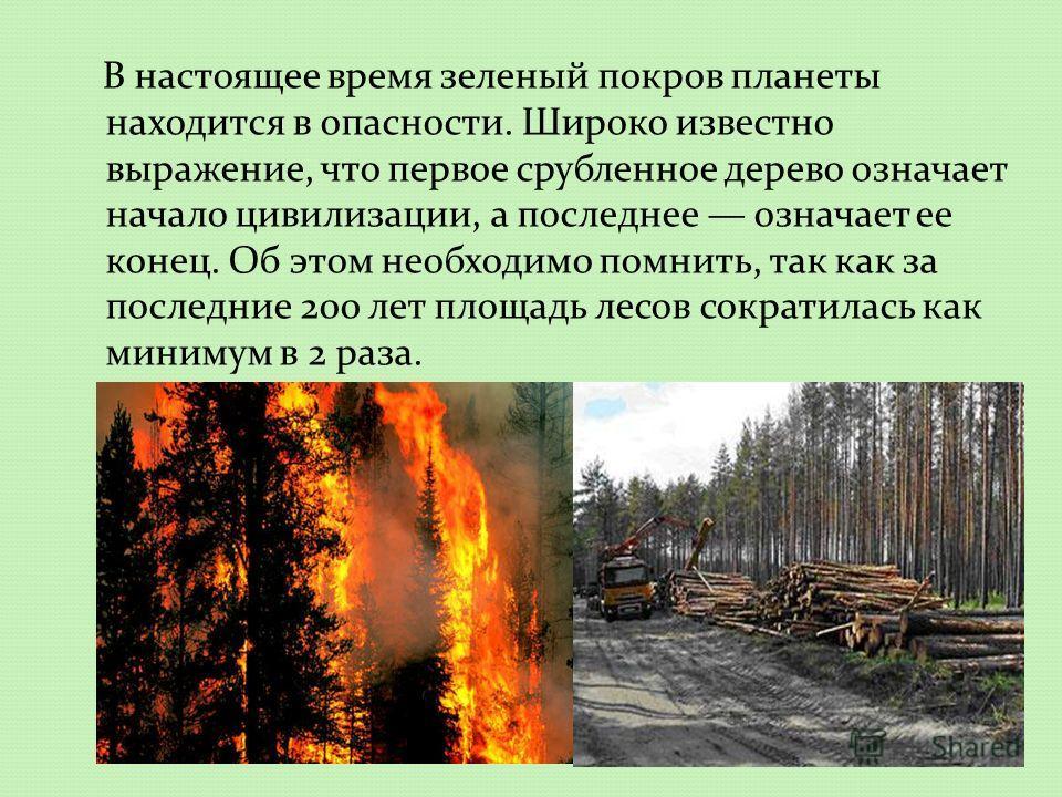 В настоящее время зеленый покров планеты находится в опасности. Широко известно выражение, что первое срубленное дерево означает начало цивилизации, а последнее означает ее конец. Об этом необходимо помнить, так как за последние 200 лет площадь лесов
