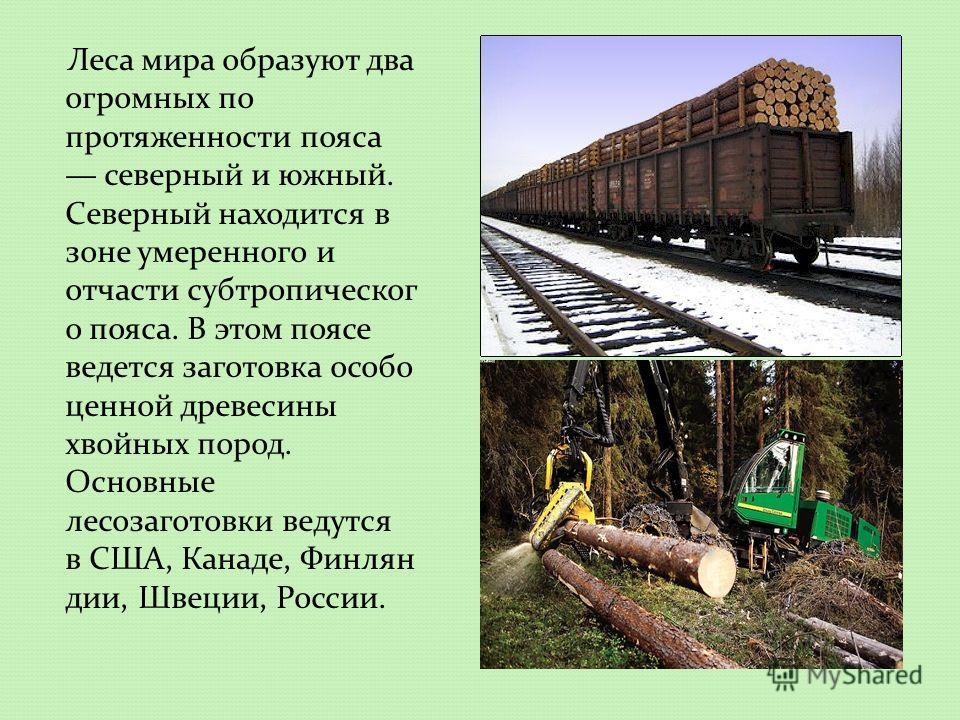 Леса мира образуют два огромных по протяженности пояса северный и южный. Северный находится в зоне умеренного и отчасти субтропическог о пояса. В этом поясе ведется заготовка особо ценной древесины хвойных пород. Основные лесозаготовки ведутся в США,