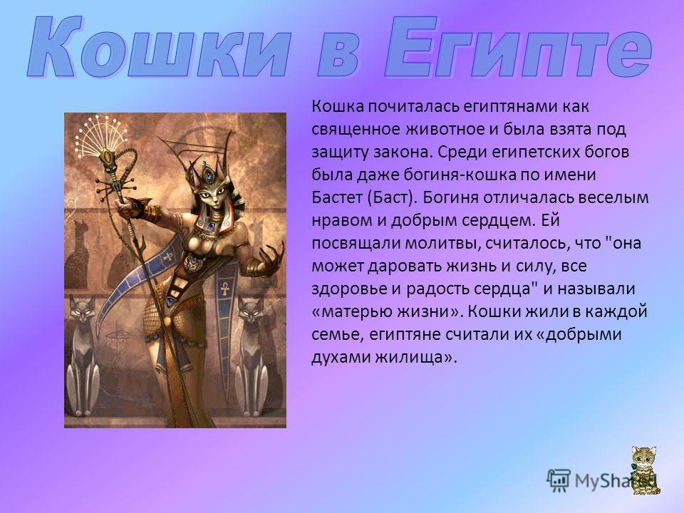 Кошка почиталась египтянами как священное животное и была взята под защиту закона. Среди египетских богов была даже богиня-кошка по имени Бастет (Баст). Богиня отличалась веселым нравом и добрым сердцем. Ей посвящали молитвы, считалось, что