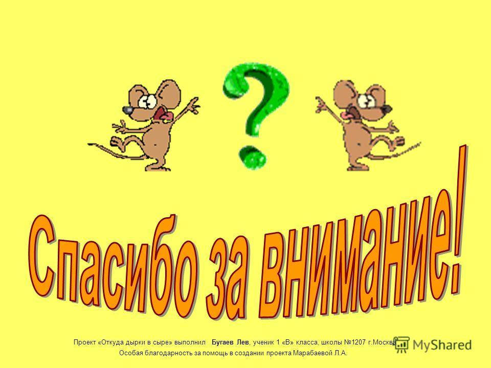 Планы на будущее Почему кот Гарфилд не ест мышей? Проект «Откуда дырки в сыре» выполнил Бугаев Лев, ученик 1 «В» класса, школы 1207 г.Москва