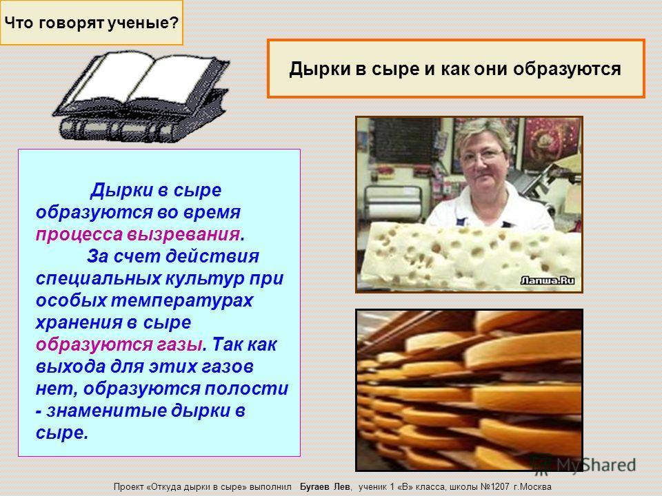 Это факт! Что любят мыши? Совершенно ясно, что предположение о том, что мыши любят сыр, является не более чем популярным заблуждением. Больше всего грызуны любят зерно и фрукты. Проект «Откуда дырки в сыре» выполнил Бугаев Лев, ученик 1 «В» класса, ш