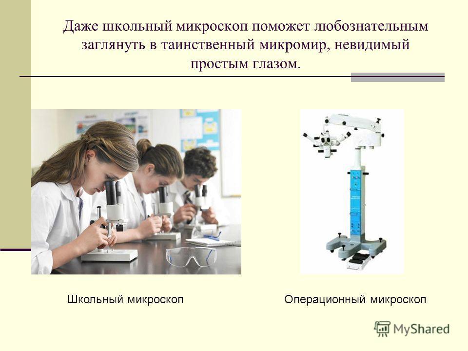 Даже школьный микроскоп поможет любознательным заглянуть в таинственный микромир, невидимый простым глазом. Операционный микроскоп Школьный микроскоп