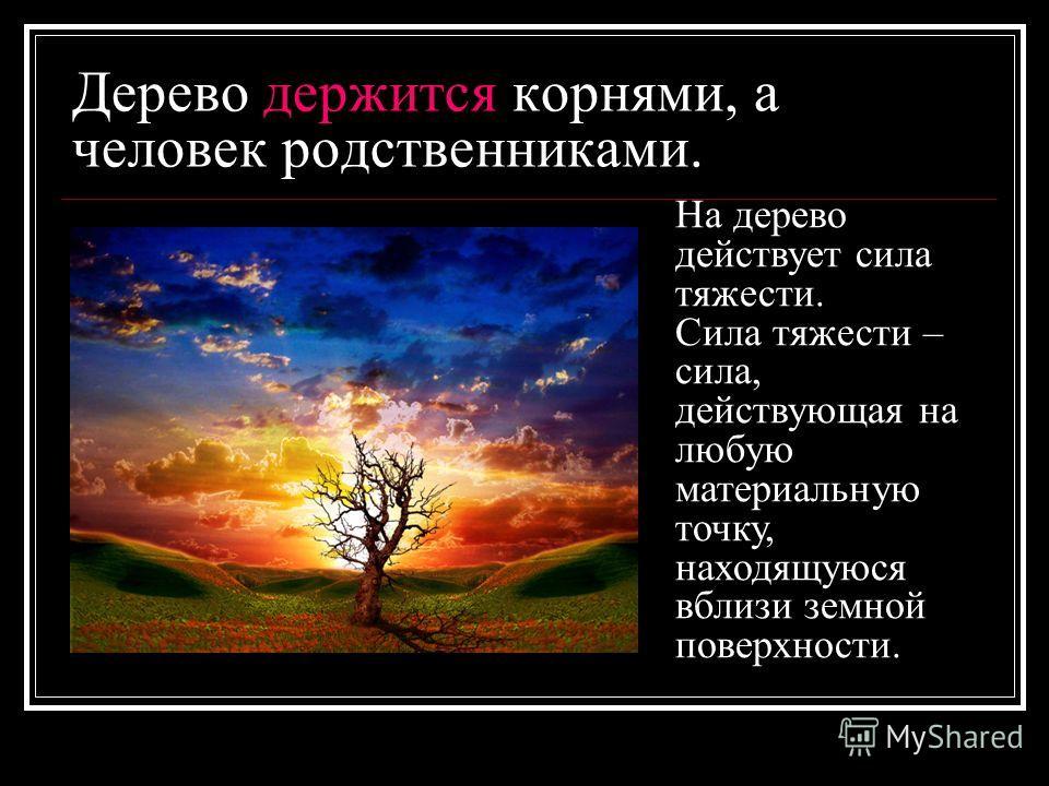 Дерево держится корнями, а человек родственниками. На дерево действует сила тяжести. Сила тяжести – сила, действующая на любую материальную точку, находящуюся вблизи земной поверхности.