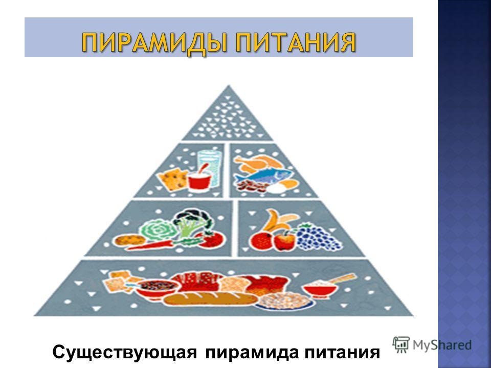 Существующая пирамида питания