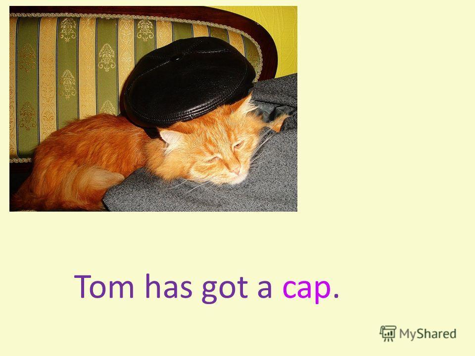 Tom has got a cap.
