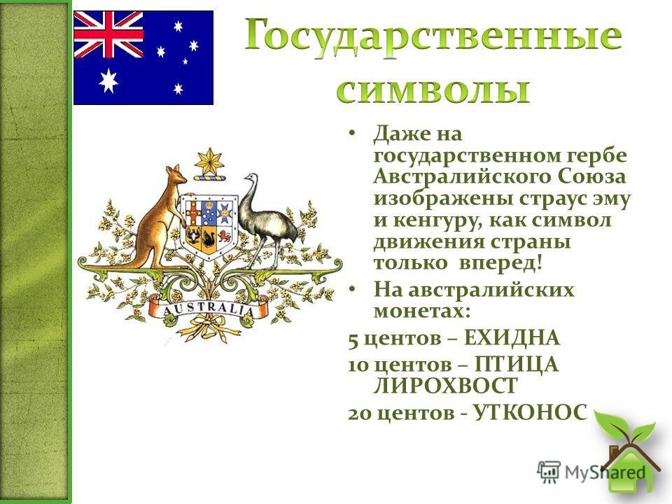 Даже на государственном гербе Австралийского Союза изображены страус эму и кенгуру, как символ движения страны только вперед! На австралийских монетах: 5 центов – ЕХИДНА 10 центов – ПТИЦА ЛИРОХВОСТ 20 центов - УТКОНОС
