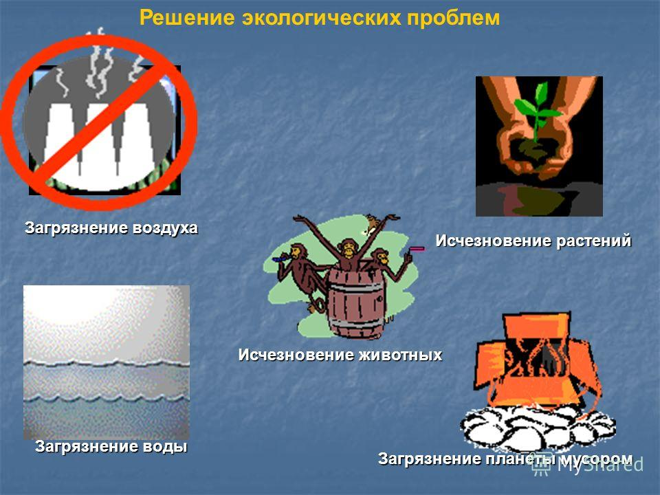 Загрязнение воздуха Загрязнение воды Исчезновение растений Исчезновение животных Загрязнение планеты мусором Решение экологических проблем