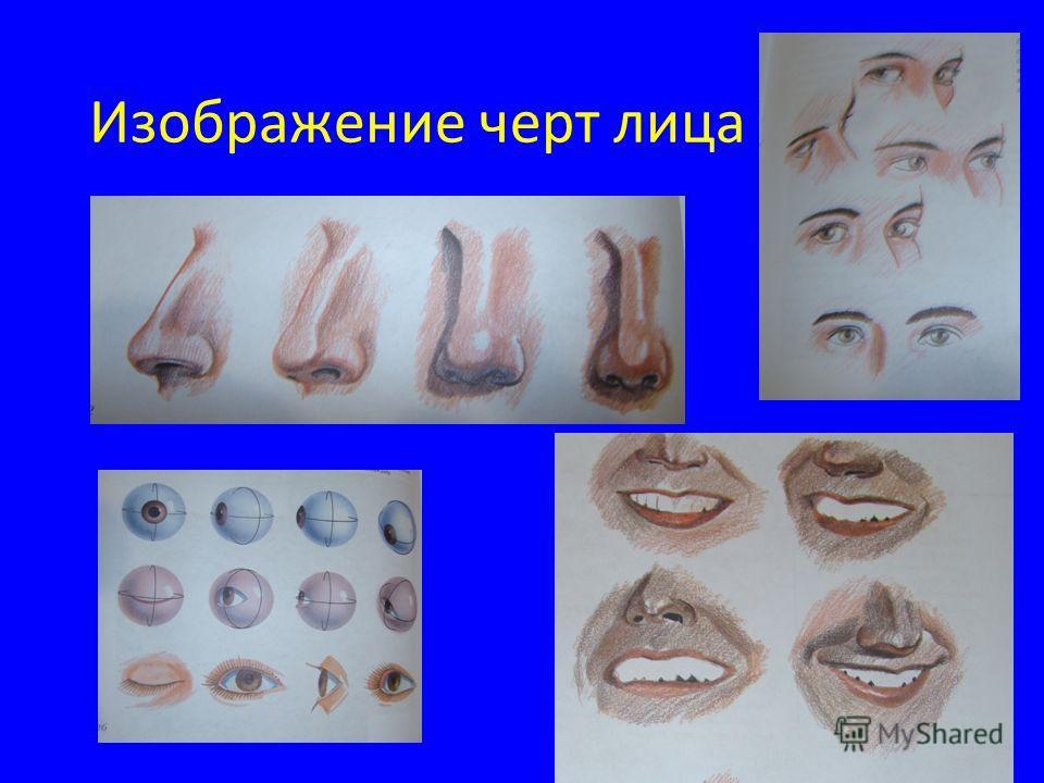 Изображение черт лица