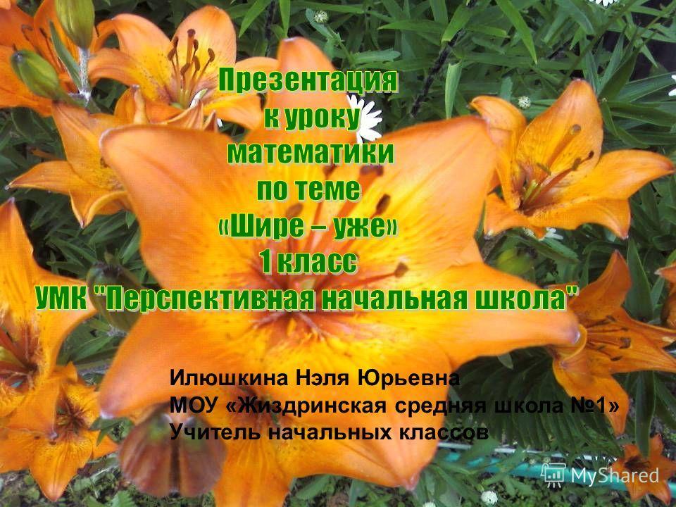 Илюшкина Нэля Юрьевна МОУ «Жиздринская средняя школа 1» Учитель начальных классов