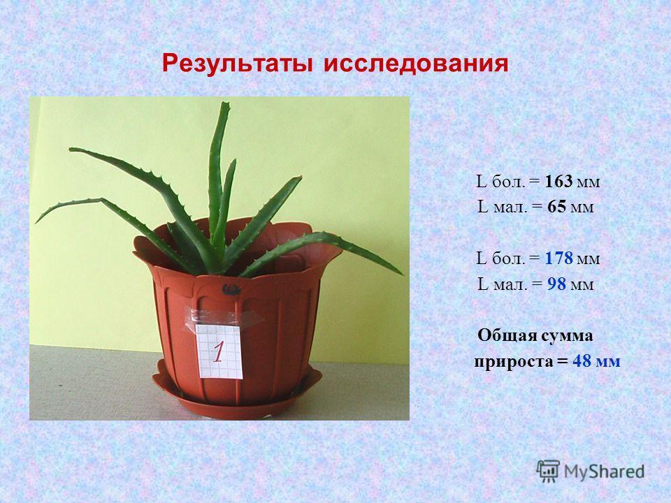 Результаты исследования L бол. = 163 мм L мал. = 65 мм L бол. = 178 мм L мал. = 98 мм Общая сумма прироста = 48 мм