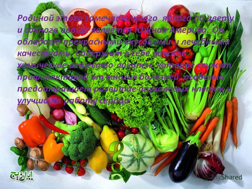Родиной этого замечательного яркого по цвету и сочного овоща является Южная Америка. Он обладает прекрасными вкусовыми и лечебными качествами. Содержит в себе важное химическое вещество ликопен, которое служит профилактикой от многих болезней, особен