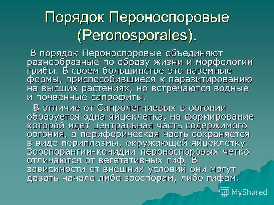 Порядок Пероноспоровые (Peronosporales). В порядок Пероноспоровые объединяют разнообразные по образу жизни и морфологии грибы. В своем большинстве это наземные формы, приспособившиеся к паразитированию на высших растениях, но встречаются водные и поч