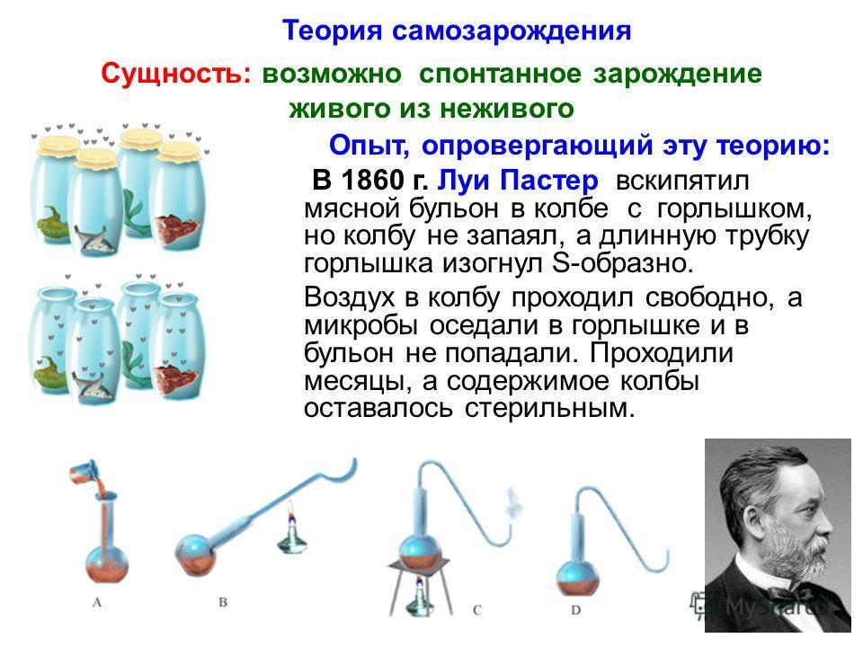 Теория самозарождения Сущность: возможно спонтанное зарождение живого из неживого Опыт, опровергающий эту теорию: В 1860 г. Луи Пастер вскипятил мясной бульон в колбе с горлышком, но колбу не запаял, а длинную трубку горлышка изогнул S-образно. Возду