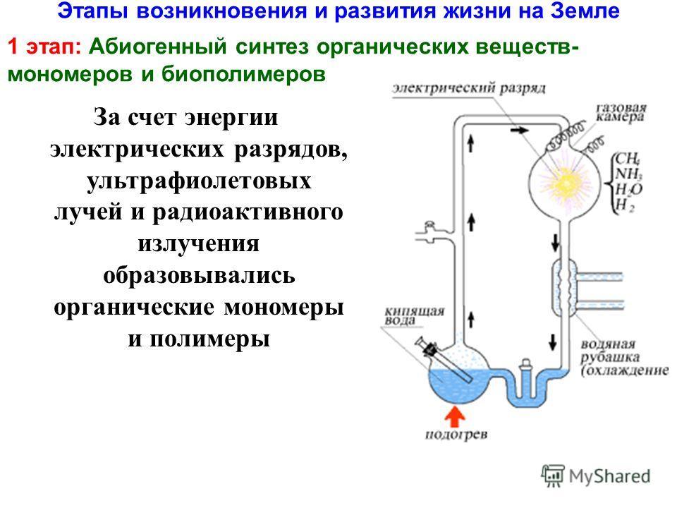 Этапы возникновения и развития жизни на Земле 1 этап: Абиогенный синтез органических веществ- мономеров и биополимеров За счет энергии электрических разрядов, ультрафиолетовых лучей и радиоактивного излучения образовывались органические мономеры и по