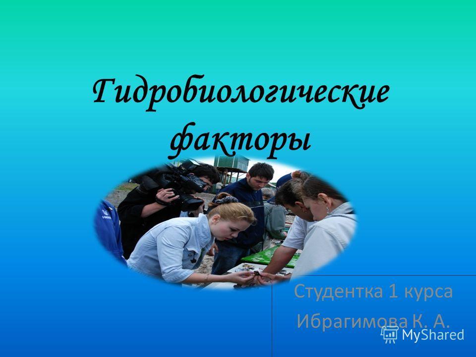 Гидробиологические факторы Студентка 1 курса Ибрагимова К. А.