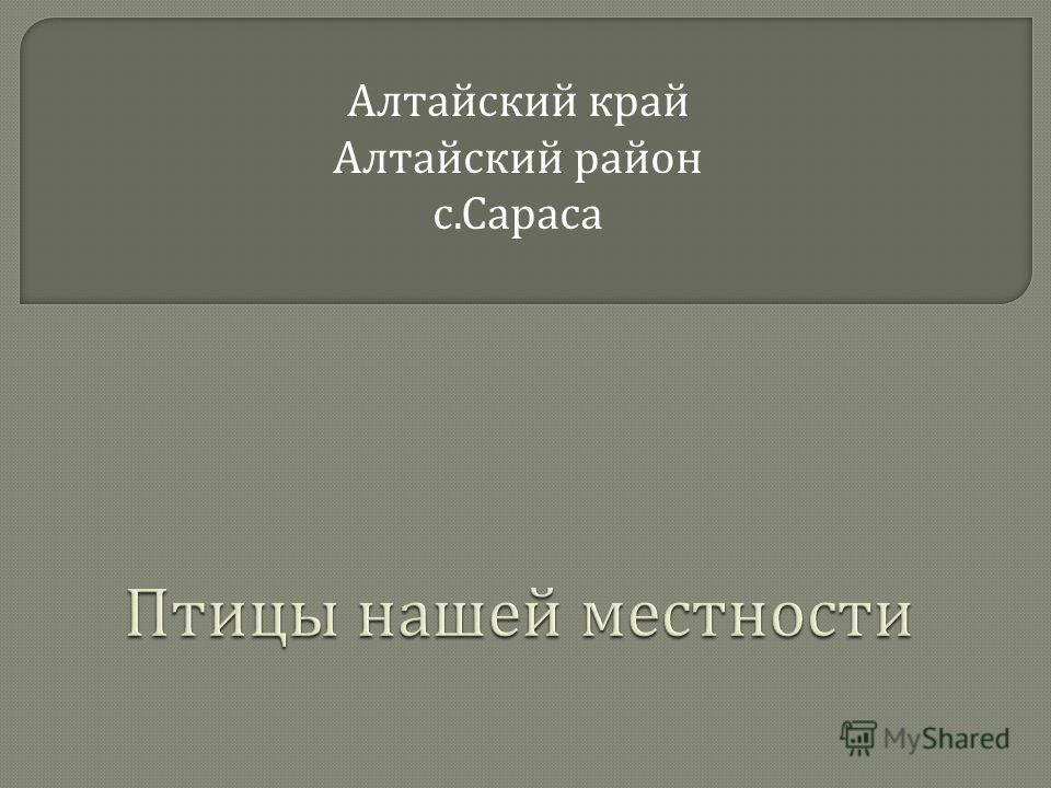 Алтайский край Алтайский район с. Сараса