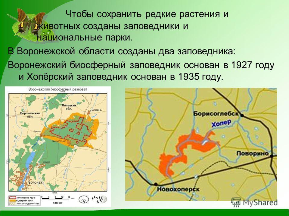 Чтобы сохранить редкие растения и животных созданы заповедники и национальные парки. В Воронежской области созданы два заповедника: Воронежский биосферный заповедник основан в 1927 году и Хопёрский заповедник основан в 1935 году.