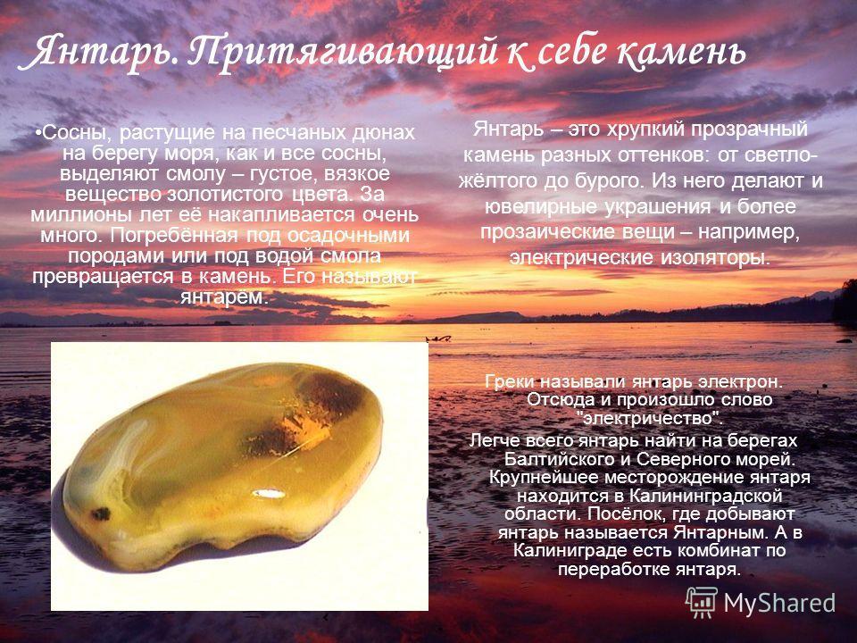 Янтарь. Притягивающий к себе камень Греки называли янтарь электрон. Отсюда и произошло слово