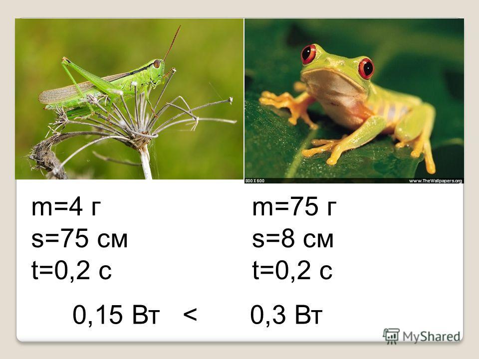 m=4 г s=75 см t=0,2 с m=75 г s=8 см t=0,2 с 0,15 Вт < 0,3 Вт