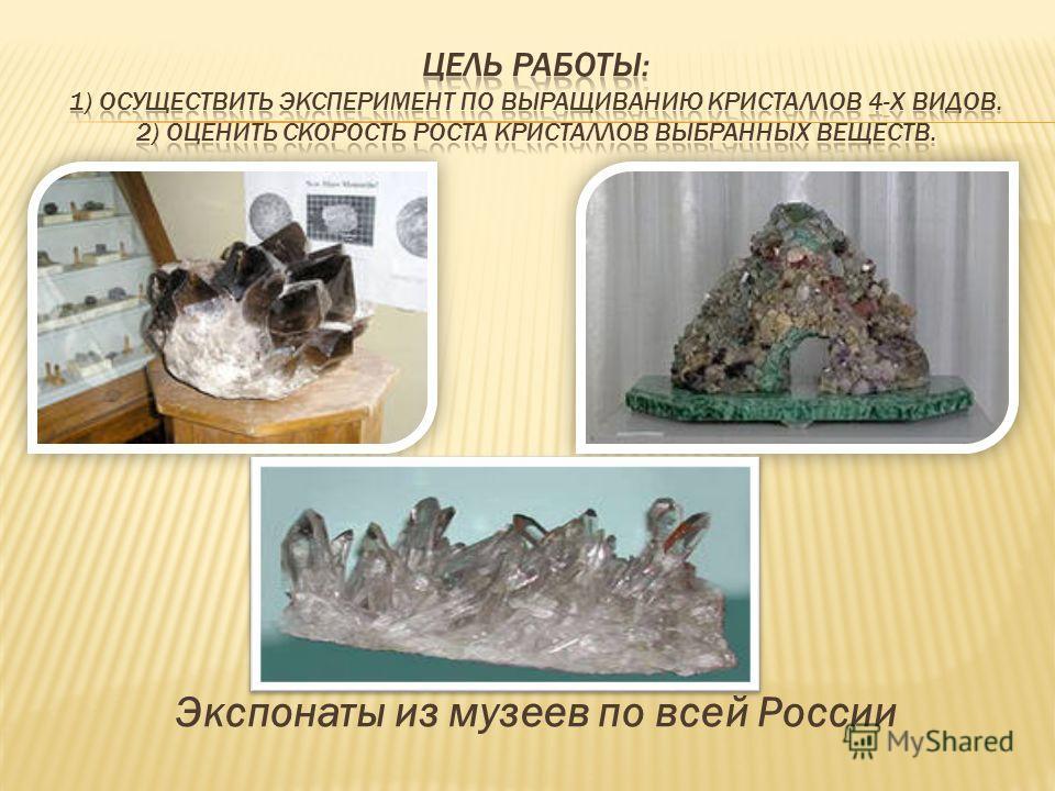 Экспонаты из музеев по всей России