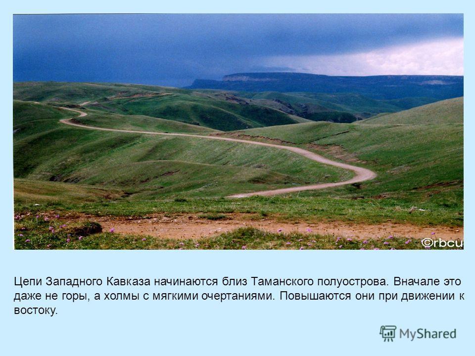 Цепи Западного Кавказа начинаются близ Таманского полуострова. Вначале это даже не горы, а холмы с мягкими очертаниями. Повышаются они при движении к востоку.