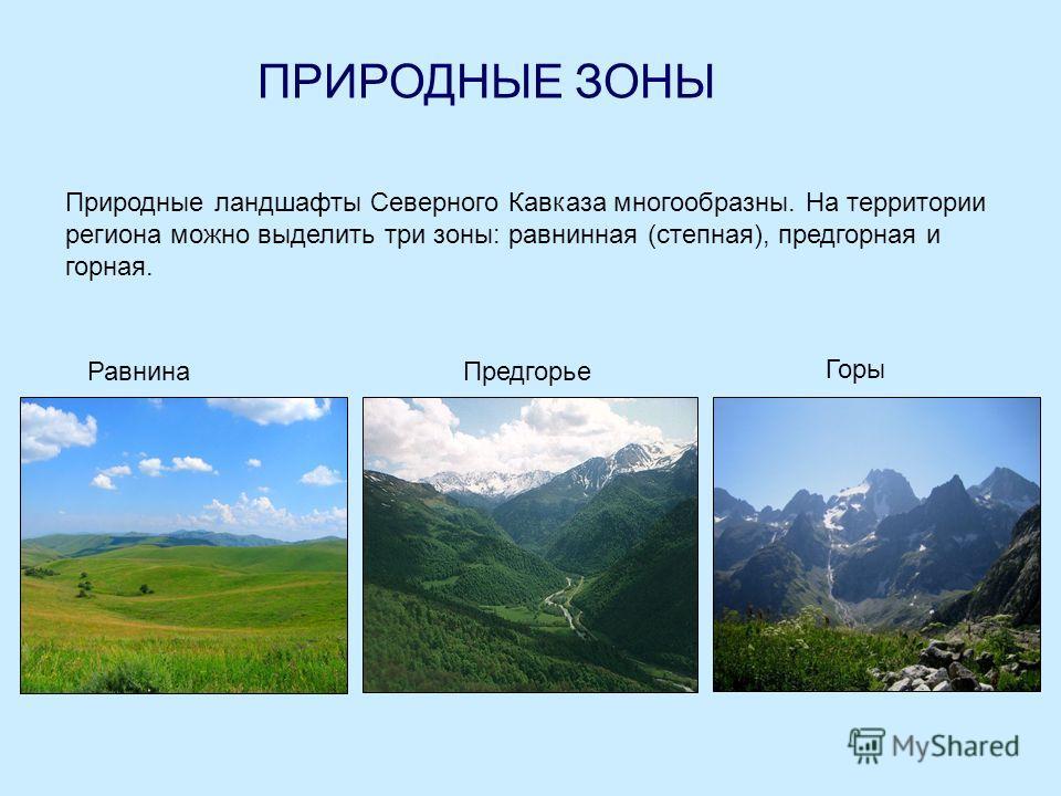 ПРИРОДНЫЕ ЗОНЫ Природные ландшафты Северного Кавказа многообразны. На территории региона можно выделить три зоны: равнинная (степная), предгорная и горная. РавнинаПредгорье Горы