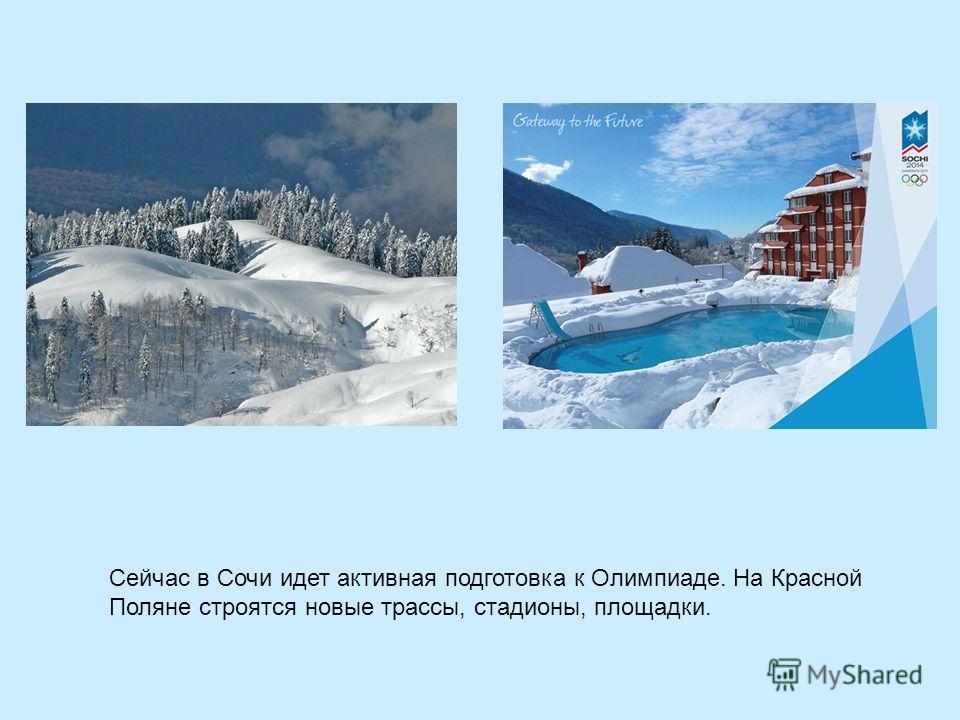 Сейчас в Сочи идет активная подготовка к Олимпиаде. На Красной Поляне строятся новые трассы, стадионы, площадки.