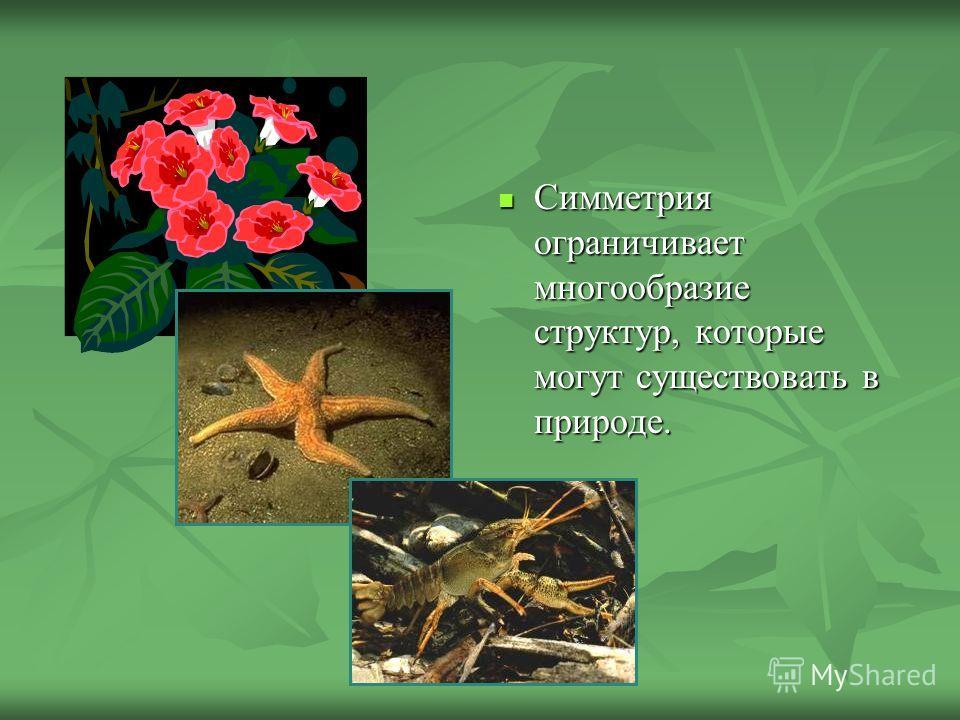 Симметрия ограничивает многообразие структур, которые могут существовать в природе. Симметрия ограничивает многообразие структур, которые могут существовать в природе.